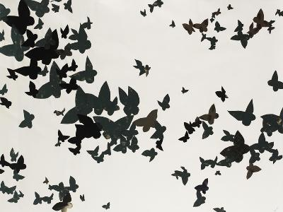 Winged Flight-Sydney Edmunds-Giclee Print