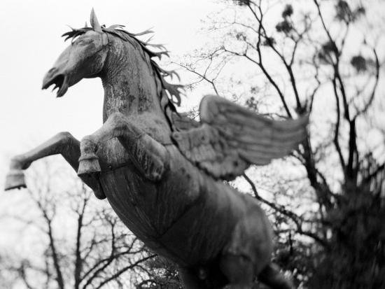 Winged Horse Statue, Mirabellgarten, Salzburg, Austria-Walter Bibikow-Photographic Print