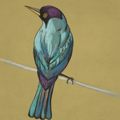 https://imgc.artprintimages.com/img/print/winged-sketch-i-on-ochre_u-l-q1bou710.jpg?p=0