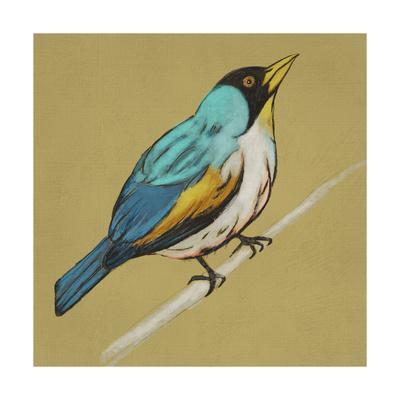 https://imgc.artprintimages.com/img/print/winged-sketch-ii-on-ochre_u-l-q1botkr0.jpg?p=0