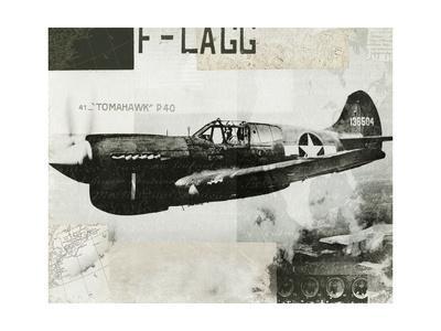 https://imgc.artprintimages.com/img/print/wings-collage-ii_u-l-pxzynb0.jpg?p=0