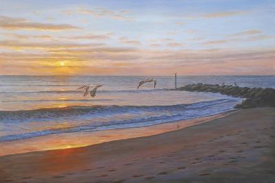 Wings over Captiva-Bruce Dumas-Giclee Print
