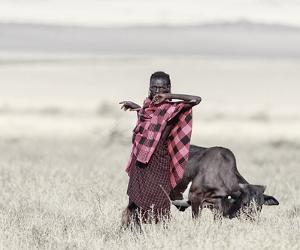 Maasai Master by Wink Gaines