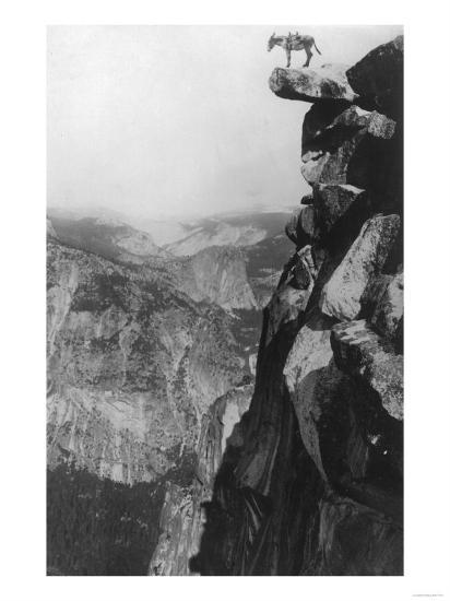 Winkey the Donkey at Glacier Point - Yosemite National Park, CA-Lantern Press-Art Print