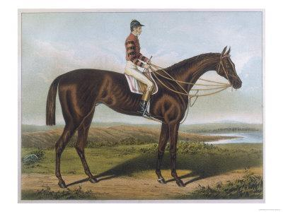 Winner of the Derby and St. Leger in 1881--Premium Giclee Print