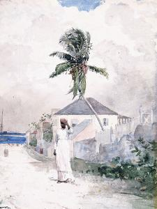 Along the Road, the Bahamas, 1885 by Winslow Homer