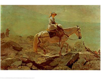 Bridle Path White Mountains