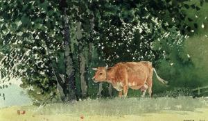 Cow in Pasture, 1878 by Winslow Homer