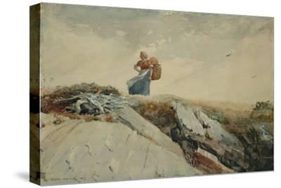Down the Cliff, 1883