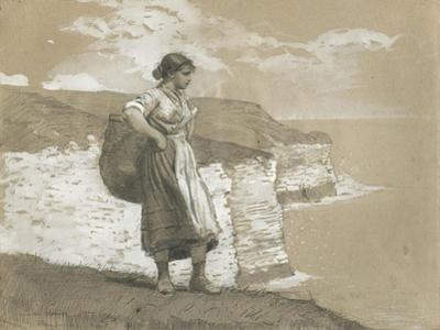 Flamborough Head, England, 1882