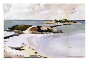 Gallows Island by Winslow Homer