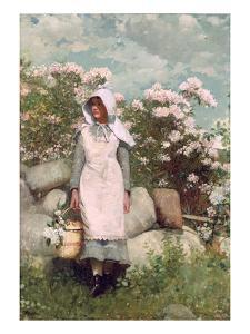 Girl and Laurel, 1879 by Winslow Homer