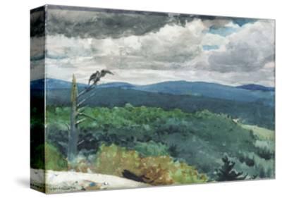 Hilly Landscape, 1894