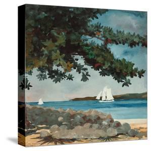 Beautiful Bahamas artwork for sale, Posters and Prints   Art com