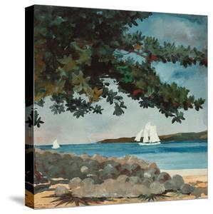 Nassau: Wasser und Segelboot (Nassau: Water and Sailboat). 1899 by Winslow Homer