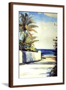 Road in Nassau, 1898-99 by Winslow Homer