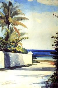 Road in Nassau, 1898-99 by Winslow Homer