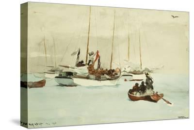 Schooners at Anchor, Key West, 1903
