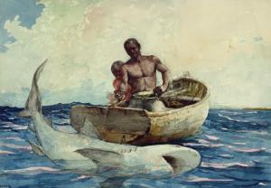 Shark Fishing, 1885 by Winslow Homer