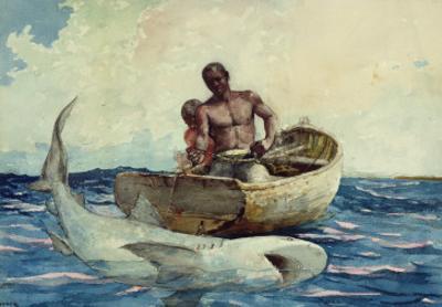 Shark Fishing, 1885