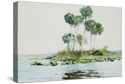 St. Johns River, Florida, 1890