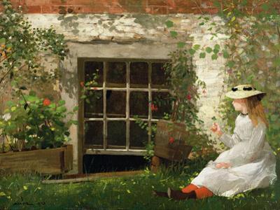 The Four Leaf Clover, 1873