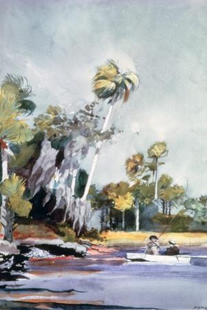 The Shell Heap, 1904