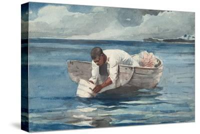 The Water Fan, 1898-99