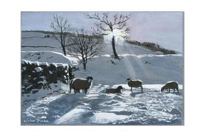 Winter Afternoon at Dentdale, 1991-John Cooke-Giclee Print