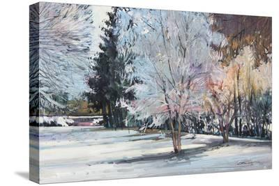 Winter Alive-Eduard Gurevich-Stretched Canvas Print