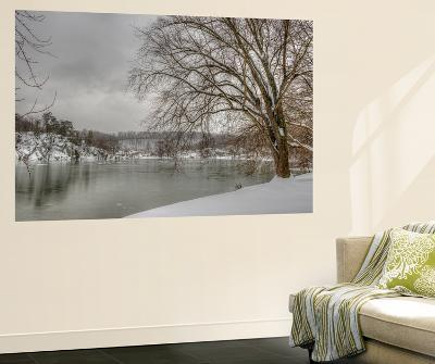 Winter Along the Potomac River-Irene Owsley-Wall Mural