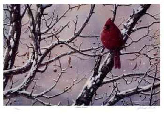 Winter Arrival-J. Vanderbrink-Collectable Print