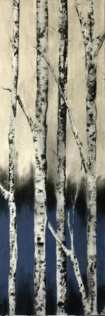 https://imgc.artprintimages.com/img/print/winter-birch_u-l-q1cgxw30.jpg?p=0