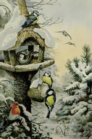 Winter Bird Table with Blue Tits, Great Tits, House Sparrows and a Robin-Carl Donner-Giclee Print