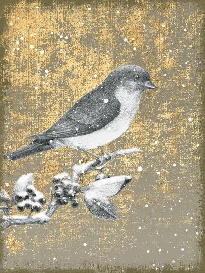 Winter Birds Bluebird Neutral-Beth Grove-Art Print