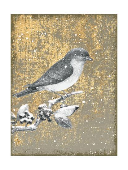 Winter Birds Bluebird Neutral-Beth Grove-Art Print