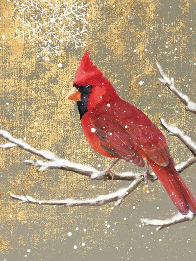 Winter Birds Cardinal Color-Beth Grove-Art Print