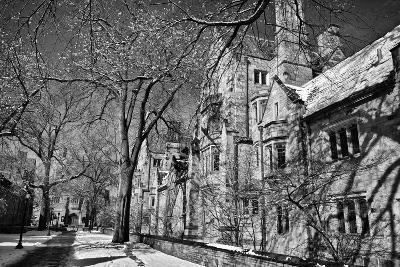 Winter Blizzard at Yale University-Kike Calvo-Premium Photographic Print