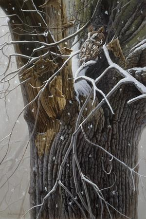 https://imgc.artprintimages.com/img/print/winter-branches_u-l-pynhty0.jpg?p=0