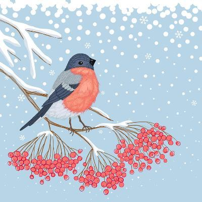 Winter Card with Bullfinch on the Branch of Rowan-Scarlet Starlet-Art Print