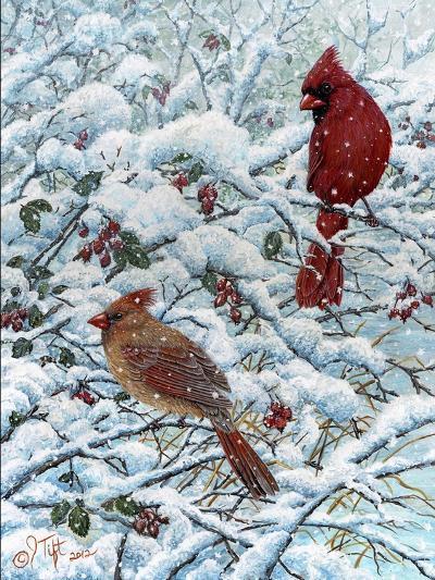 Winter Cardinal Painting-Jeff Tift-Giclee Print