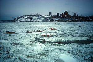 Winter Celebration, Quebec City, Quebec Province, Canada