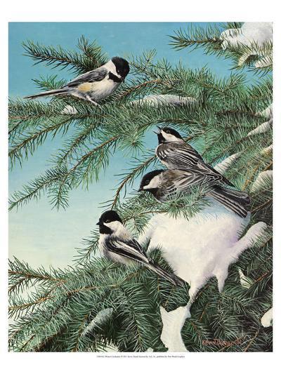 Winter Chicadees-Kevin Daniel-Art Print