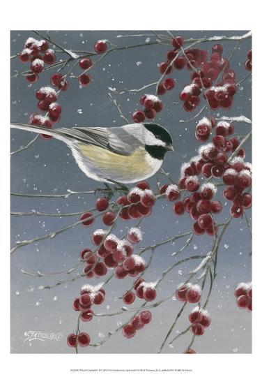 Winter Chickadees I-Fred Szatkowski-Art Print