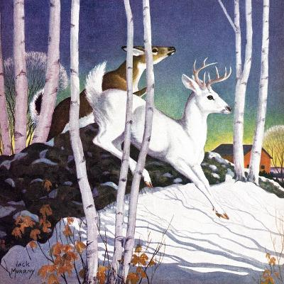 Winter Deer - Child Life-Jack Murray-Giclee Print