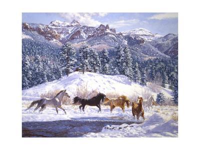 https://imgc.artprintimages.com/img/print/winter-enchantment_u-l-q11ah630.jpg?p=0