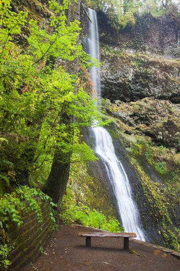 Winter Falls, Silver Falls State Park, Oregon, USA-Jamie & Judy Wild-Photographic Print
