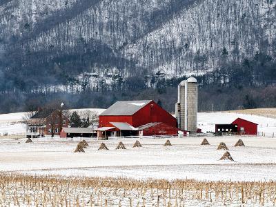 Winter Farm-Bill Coleman-Giclee Print