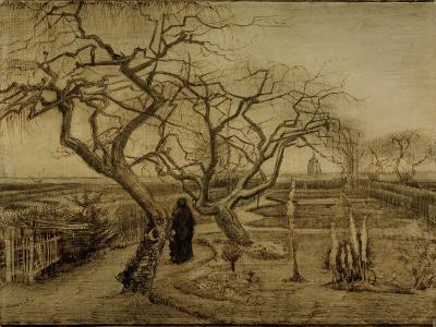 Winter Garden, March 1884-Vincent van Gogh-Giclee Print