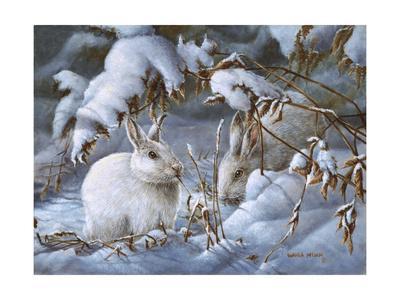 Winter Hares-Wanda Mumm-Giclee Print